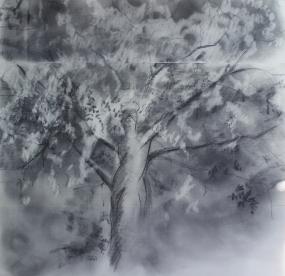 Tree Lady (Unshakeable Faith 2)